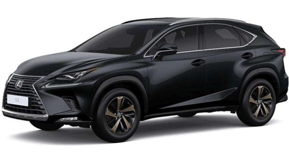 Lexus NX 2019 Others 004