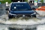 Toyota Corolla Cross 2021 Terbukti Laku, Bakal Gusur Corolla Sedan?