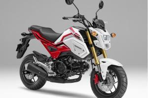 Honda Luncurkan MSX125 Grom, Tampil Lebih Modern dengan Harga Rp 32 jutaan