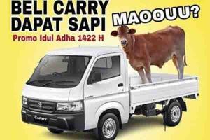 Beli Suzuki New Carry Sekarang, Bonus Seekor Sapi Untuk Qurban!