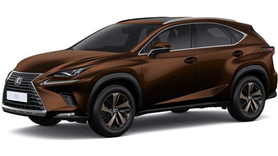 Lexus NX 2019 Others 005
