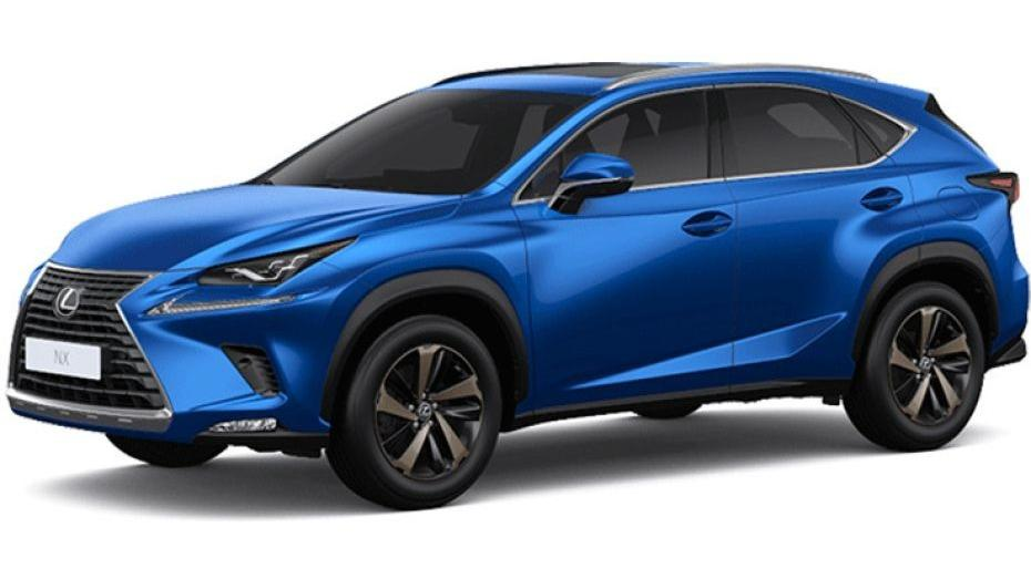 Lexus NX 2019 Others 006