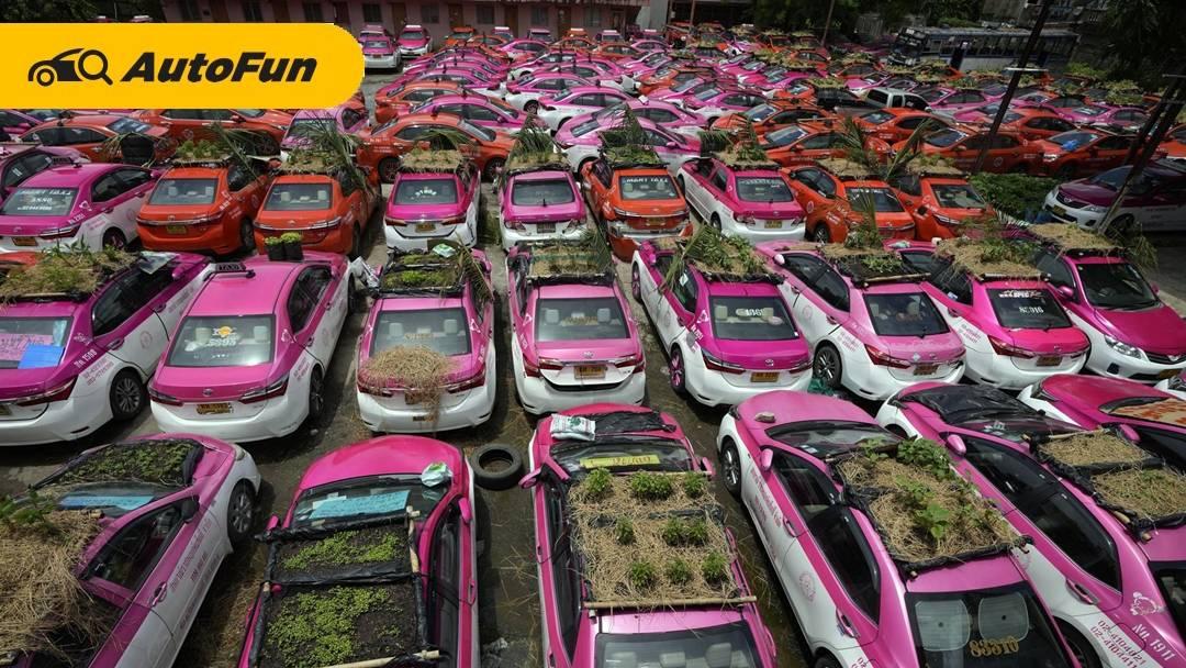 Agar Tetap Bisa Makan, Atap dan Kap Mesin Taksi Dijadikan Kebun Sayuran di Thailand 01