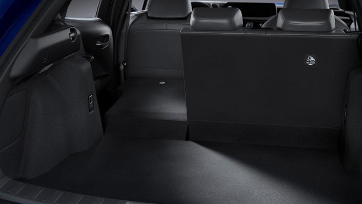 2021 Lexus UX 300e Interior 007